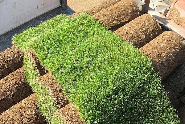 artificial-grass-made-of